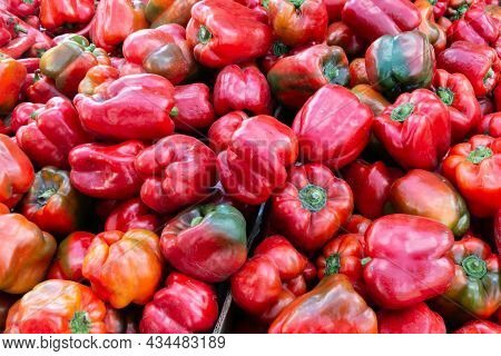 Lots Of Vegetable Red Pepper. Pepper Is Used In Salads, Soups, Casseroles, Vegetable And Meat Stews,