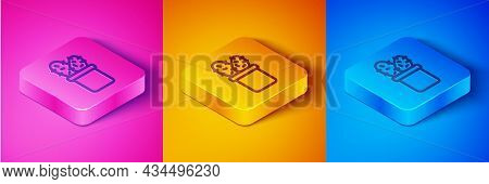 Isometric Line Cactus Peyote In Pot Icon Isolated On Pink And Orange, Blue Background. Plant Growing