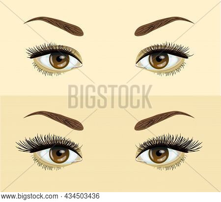 Eyelashes Extension. . Before And After Effect. Beauty Open Eye With Short And Long Eyelashes Vector