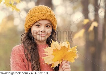 Autumn Girl In Stylish Knitted Hat And Warm Sweater Enjoy Day In Forest Holding Yellow Maple Leaves
