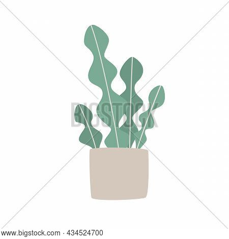 Illustration Of Cute Succulent Plant Growing In Pot. Houseplant In Pot. Vector Illustration.