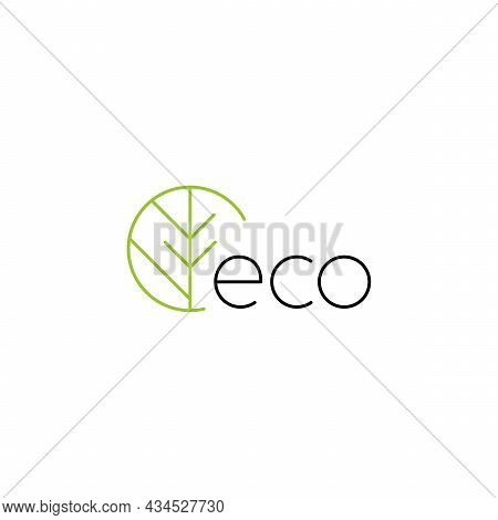 Eco Logo With Green Branch. Natural, Eco. Natural Badges For Green Company. Vector Minimalistic Line