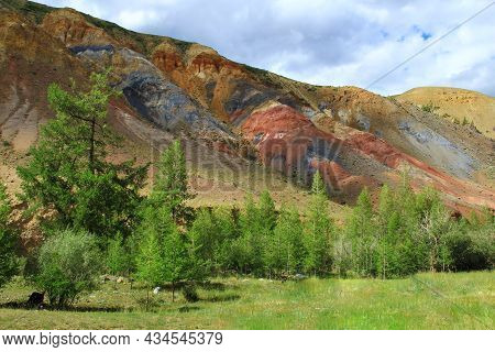 Slope Of A Multi-colored Clay Ridge, Red, Blue, Yellow, Gray Stripes On The Slope, Trees And A Meado