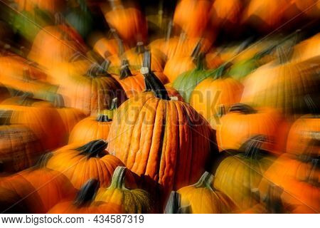 Pumpkins in a pile on the ground harvested in the fall autumn