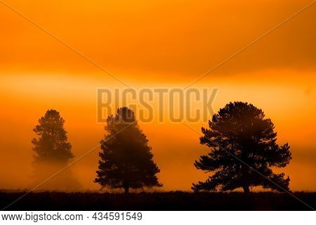 Morning sunrise with trees and river under blue sky and glowing mist