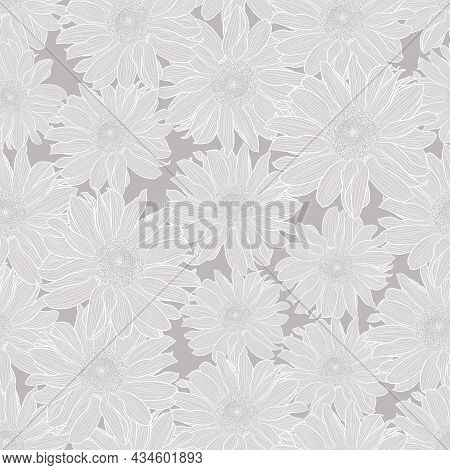 Floral Seamless Pattern Of Light Grey Chamomile Flowers With White Outline On Grey Background. Decor