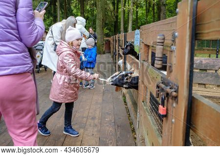 Moscow. Russia. September 25, 2021. Visitors To The Petting Zoo Feed The Goats With Carrots. Close C