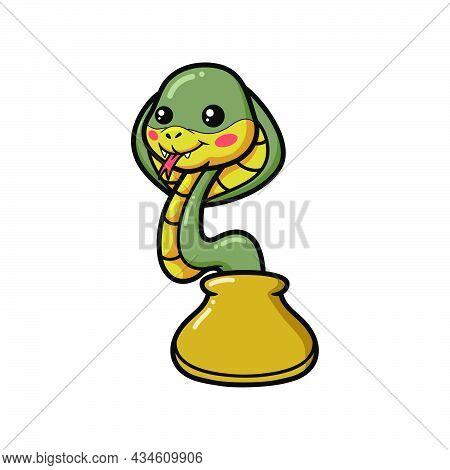 Cute Little Cobra Snake Cartoon Out From Bag
