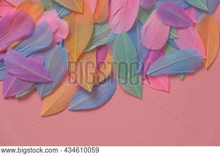 Feathers Multicolored In Pastel Colors. Feathers Texture. Pink, Mint, Blue And Purple Feathers.