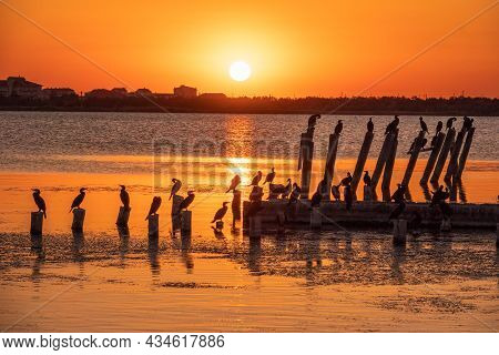 Beautiful Red And Orange Sunset Over Sea, The Sun Goes Down Over Sea. Dramatic Sunset Sky. A Flock O