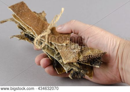 A Man Holds Up Dog Treats Tied With Twine. Long Dried Plates Of Beef Stomach. Useful Beef Tripe. Clo