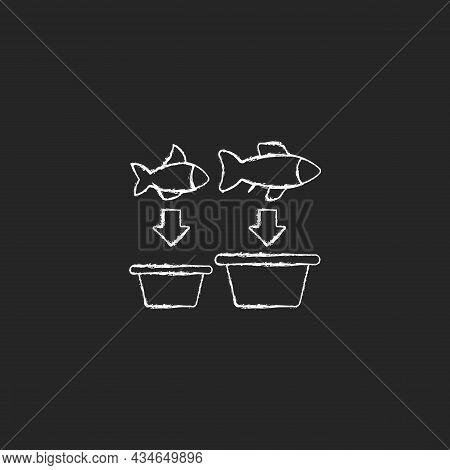 Fish Sorting Chalk White Icon On Dark Background. Grading And Separating Seafood Products For Trade.