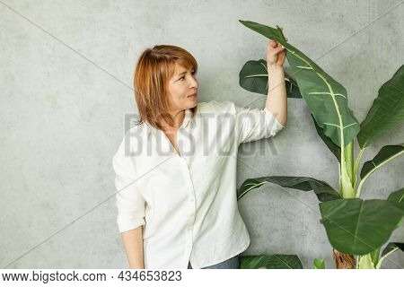 Professional Ecologist Mature Woman With Green Plant