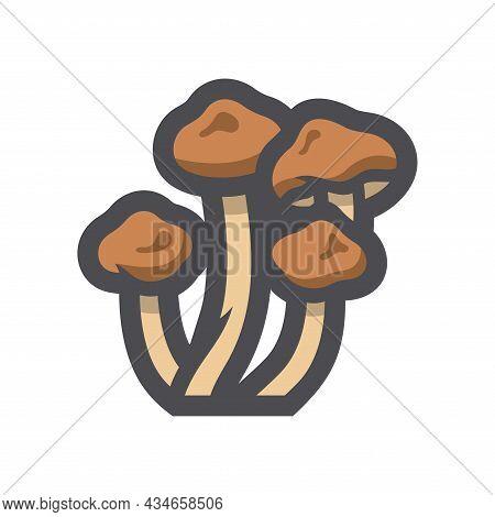 Honey Agarics Mushroom Vector Icon Cartoon Illustration