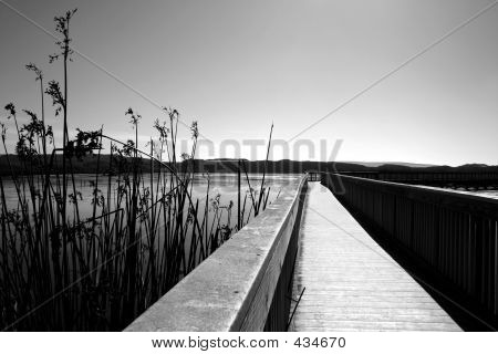 Boardwalk In Black And White