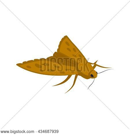 Isometric Icon Of Clothes Moth On White Background Vector Illustration