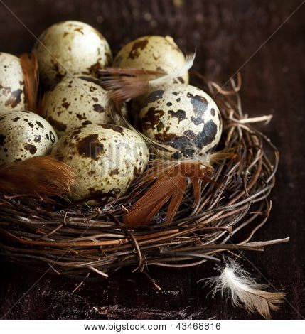 Quail eggs and feathers in a nast on an old wooden board. poster