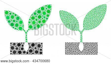 Vector Covid-2019 Composition Plant Sprout Combined For Hospital Projects. Mosaic Plant Sprout Is Ba