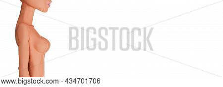 3d Body Of A Young Woman Isolated On A White Background. Female Mannequin Without Hair. Female Bust,