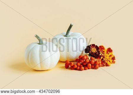 Ripe Pumpkins With Autumn Marigold Flowers On A Yellow Pastel Background. Minimalistic Concept For T