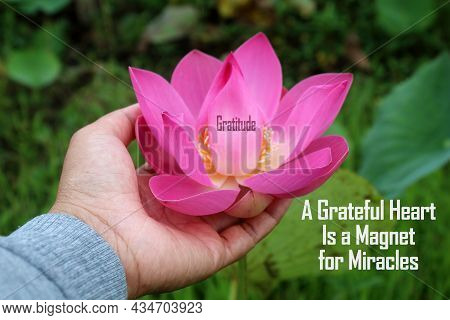 Gratitude Concept With Inspirational Words - A Grateful Heart Is A Magnet For Miracles. On Backgroun