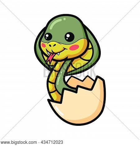 Cute Little Cobra Snake Cartoon Inside An Egg