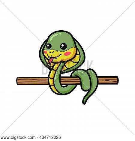 Cute Little Cobra Snake Cartoon On Tree Branch