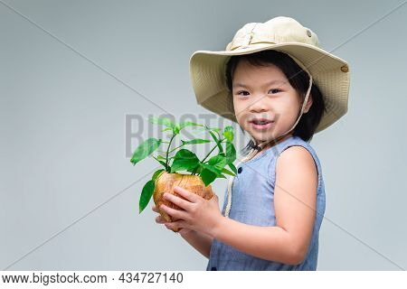 Cute Asian Child Girl Holding A Tree Plant In A Pot From A Coconut Shell With Soil In It. Growing Tr