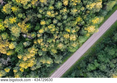 Aerial View From Drone Of Concrete Road Leading Through Autumn Forests And Groves In Yellow Green Co