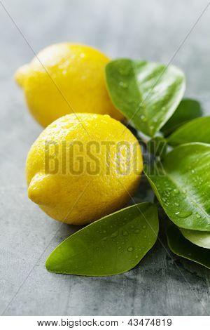 closeup of fresh lemons with droplets