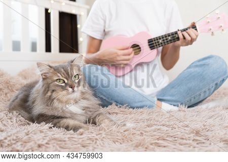 A Cute Girl In Jeans Plays A Pink Ukulele While Sitting On A Bed With A Cat.