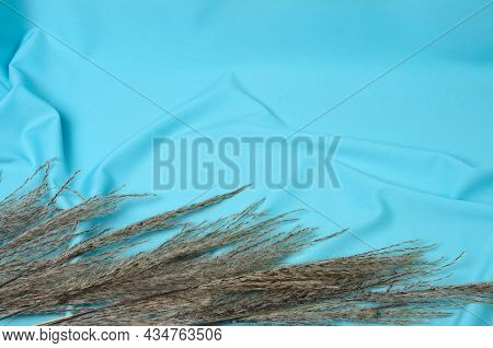 Autumn Bouquet Of Cattails And Reeds On A Textured Background Made Of Soft Blue Fabric With Elegant