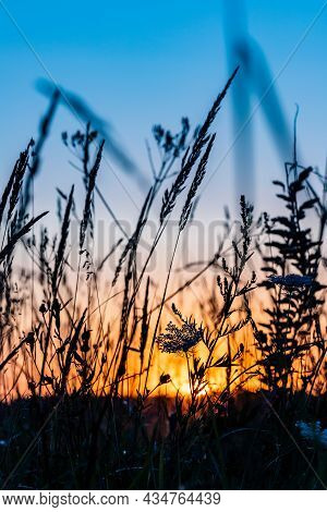 Vertical Photo Of Sunrise In The Field. Sunset Over The Meadow With Grass Silhouette. Daybreak At Th