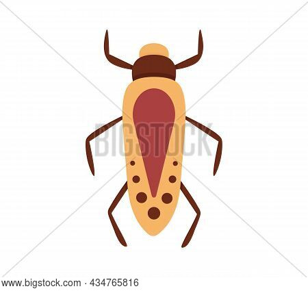 Bug Vector Icon For Web Design Isolated On White Background. Bug And Insect Set In Cartoon Style.