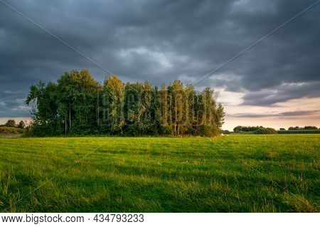 Green Meadow With Forest And Dark Clouds, Evening View