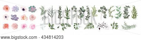 Vector Set Of Flowers And Herbs. Pink Roses, Various Plants, Leaves, Grass. Collection Of Greenery,