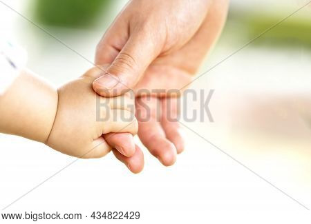 Family Scene , Close Up Parent And Baby Holding Hands Together And Green And Whier Background With C