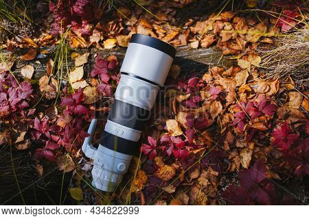 Big Gray Long-focus Lens Or Telephoto Lens Lies In The Forest On A Log Covered With Dry Yellow And R