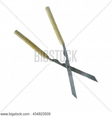 Watercolor Illustration Image Of Scissors. Gardening Scissors. Garden Inventory.