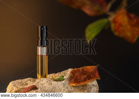 Beautiful Glass Sprayer Bottle Standing On A Stone. Autumn Cosmetic Concept Composition. Wooden Scen
