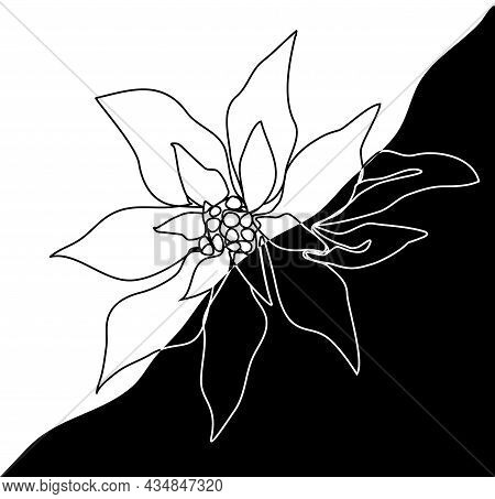 A Modern Poinsettia Flower, In The Style Of One Line. A Hand-drawn Abstract In A Minimalist Style. T