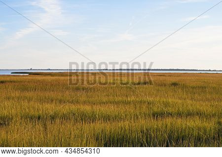 Wetlands And Costal Marsh In Virginia Usa Viewed In The Golden Late Afternoon Sun On An Autumn Day.