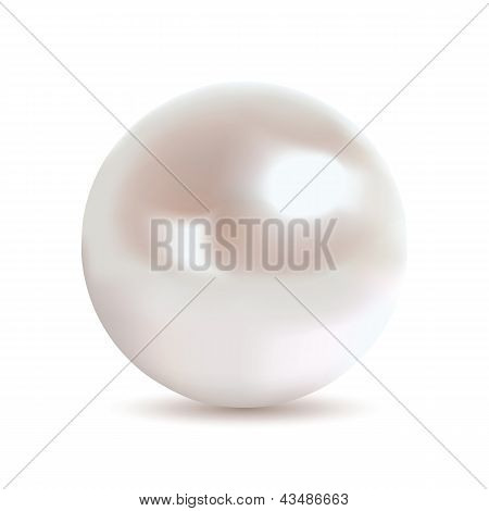 Very realistic shiny pearl. Gradient mesh used. poster