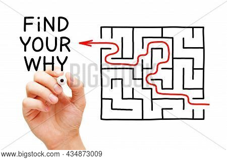 Hand Writing Find Your Why Next To A Drawn Maze. Concept About The Importance Of Discovering The Pur
