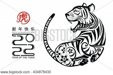 Tiger 2022 913
