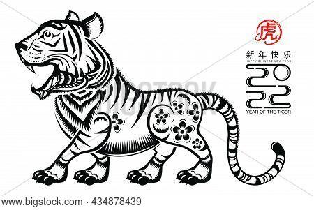 Tiger 2022 915