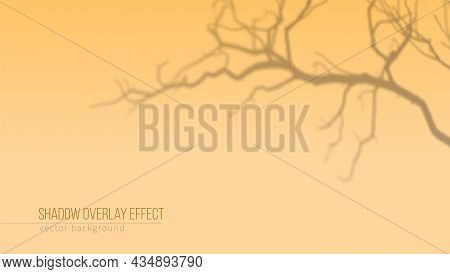 Shadow Of Tree Branches On Orange Background. Shadow Overlay Effect. Vector Background For Branding