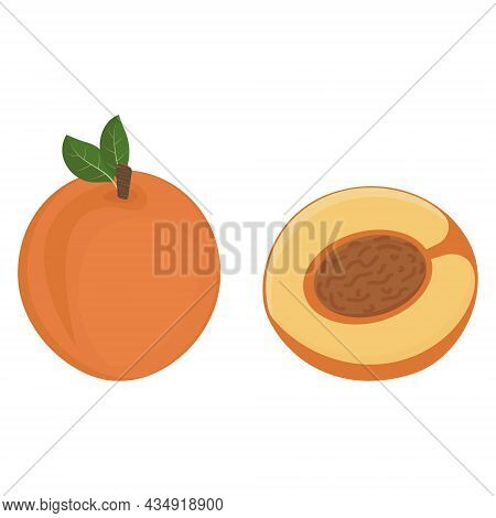 Peach Fruit And Half A Peach With A Stone, Color Isolated Vector Illustration.