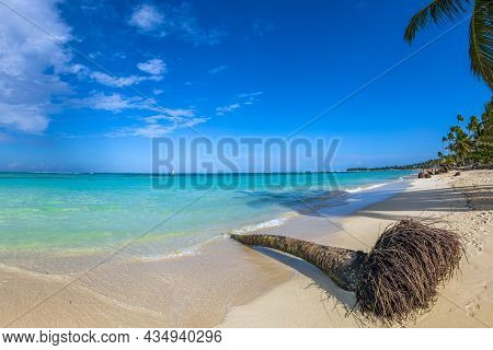 Beautiful Wild And Sand Beach In Punta Cana, Dominican Republic. Fish Eye View.
