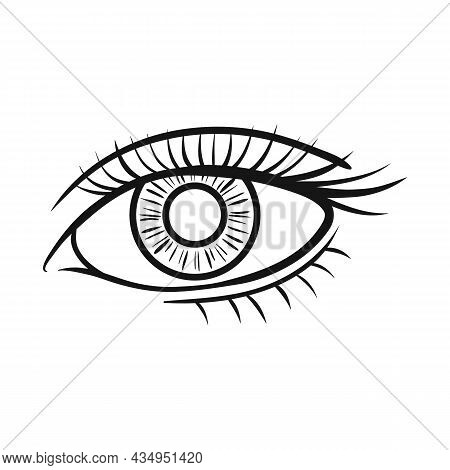 Vector Design Of Eye And Eyesight Symbol. Graphic Of Eye And Diagnostic Stock Vector Illustration.